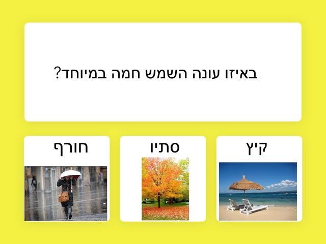עונת הקיץ  by שובל רוימי