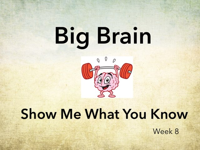 Big Brain Show Me Week8 by Michelle Knight