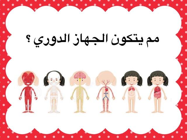 الجهاز الدوري by Fatma Al-Ameer