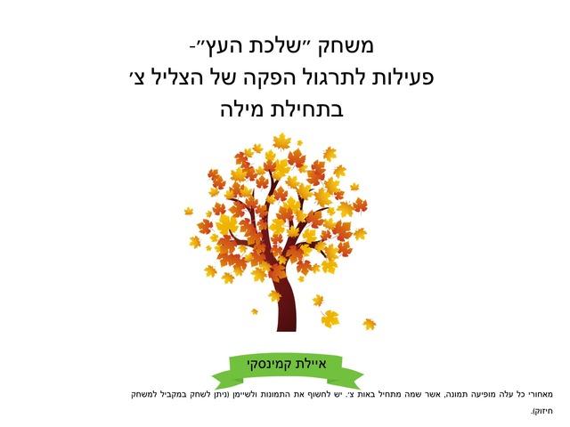 תרגול צ׳  by Ayelet Levy Kaminsky