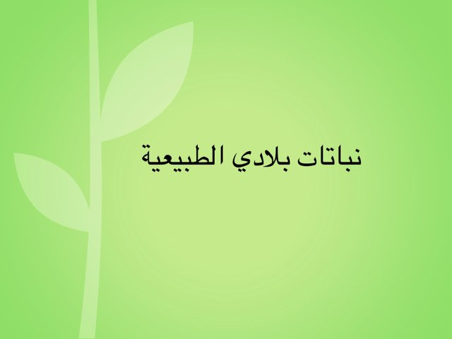 لعبة 38 by Ashwaq Alazmi