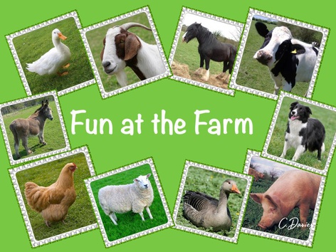 Fun At The Farm by Catherine Davies