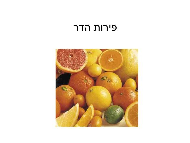 פירות הדר by מלי דמארי