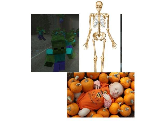 Halloween by sigal shem-tov