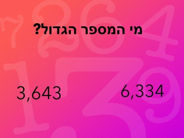 אלפים by נרג׳ס קשקוש