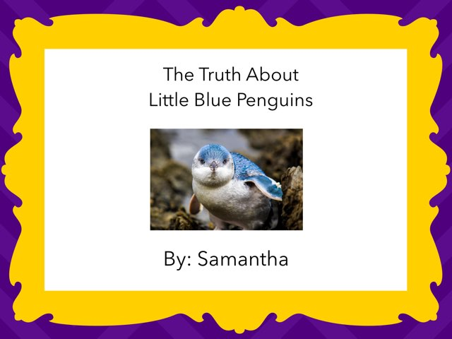 The Truth about Little Blue Penguins by Diana Coyne