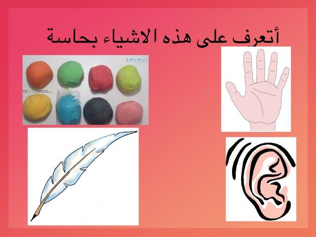 ما ملمس الاشياء  by Maryam mAlan