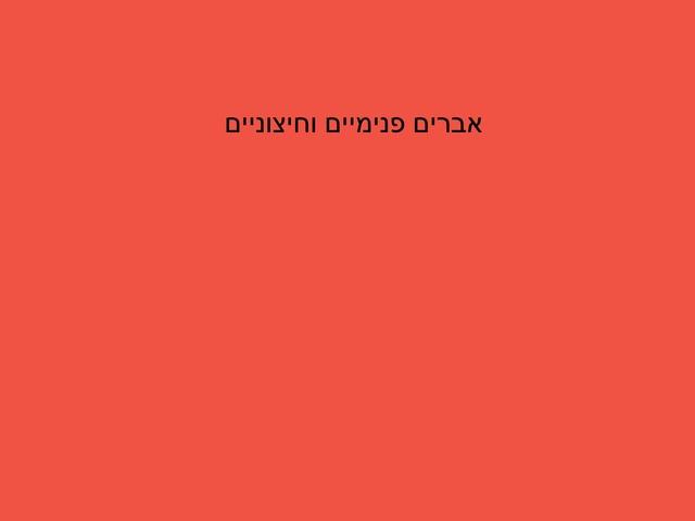 אברים פנימיים וחיצוניים by מיתל ירושלים