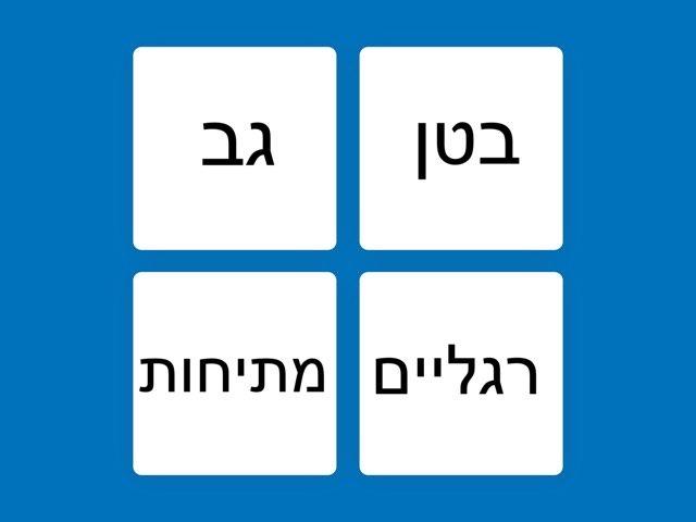 משחק 1 by gan meshi