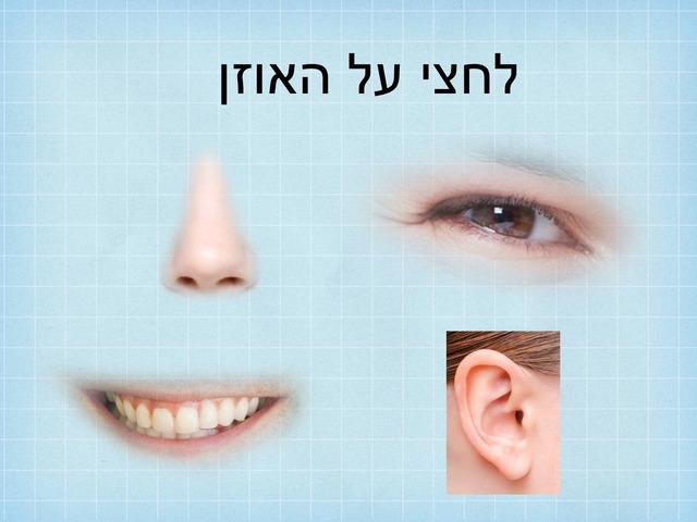 האוזן by אריאל מנדלבאום
