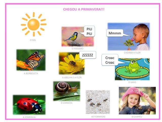 Treino Auditivo PRIMAVERA by Susana capitao