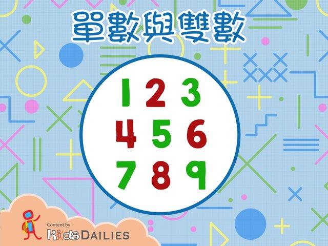 認識單數與雙數 by Kids Dailies