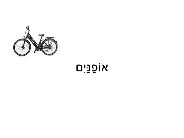אופניים גדולים by Inbar Palechovsky Zorea