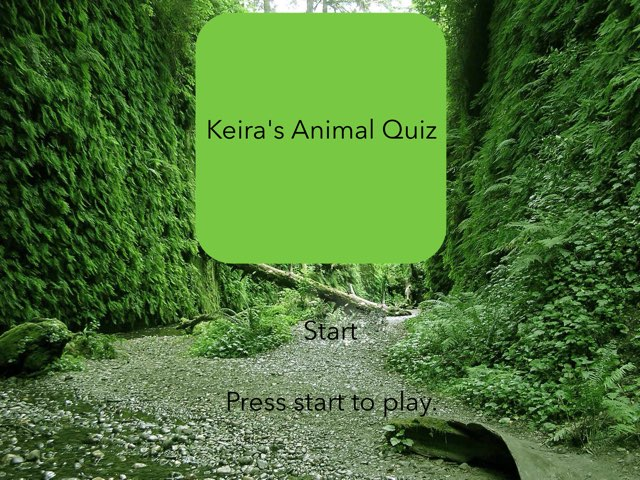 Keira's Animal Game by RGS Springfield