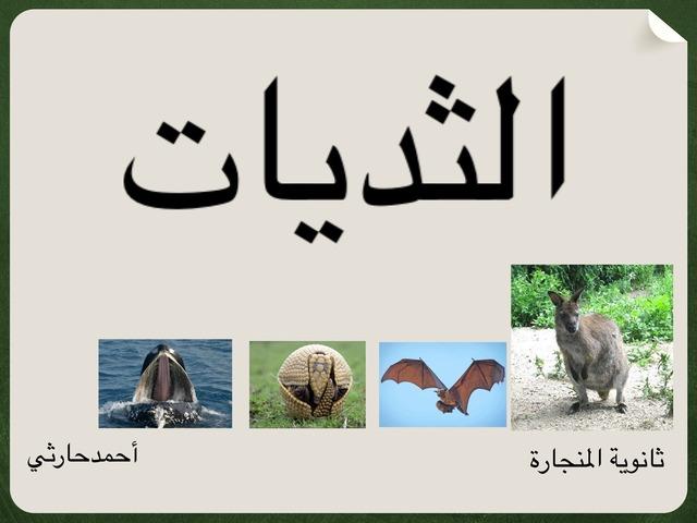 الثديات by احمد كريري