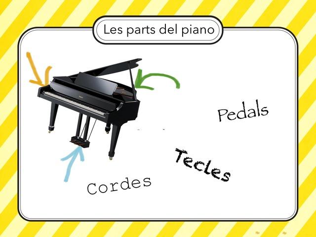 Les Parts Dels Instruments De Corda Copy  by Teresa Ortega Ferrer