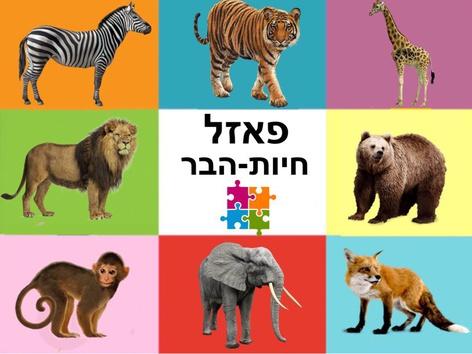 פאזל חיות היער  by Liat Bitton-paz