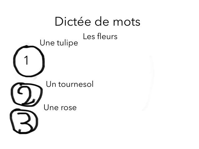 Dictée Pour Les CE2 by Rajhi Lina