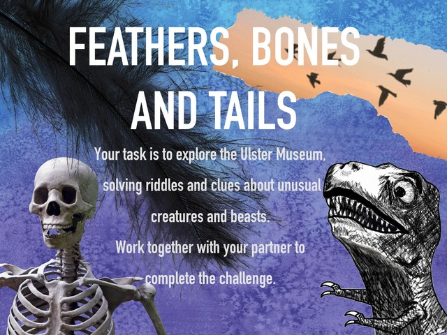 Feathers Bones And Tails  by Emma McAleer
