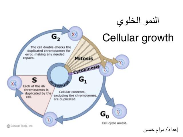 النمو الخلوي by Maram Hassan