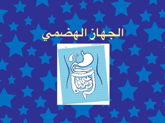الجهاز الهضمي by aisha90 91
