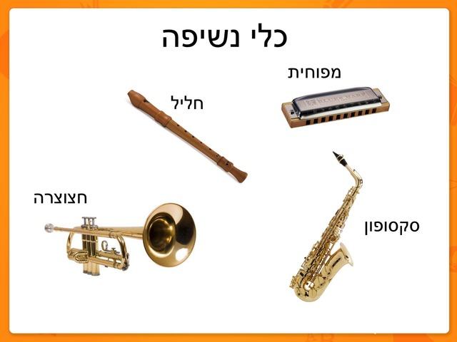 כלי נשיפה by מיתל ירושלים