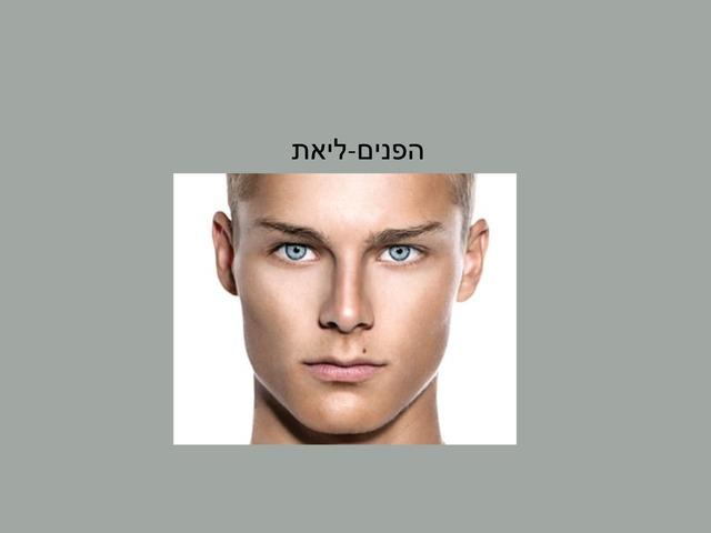 פנים by מיתל ירושלים