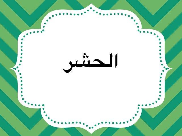الحشر by Omvns elamdaaa