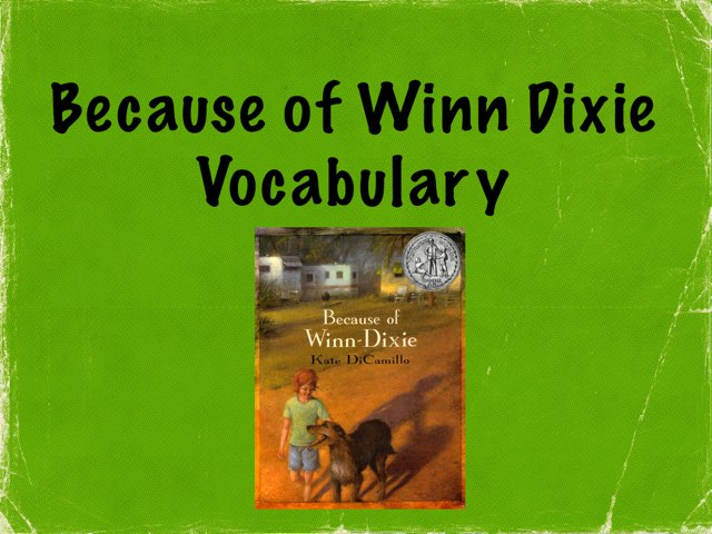 Vocabulary For Because Of Winn Dixie  by Karen Souter