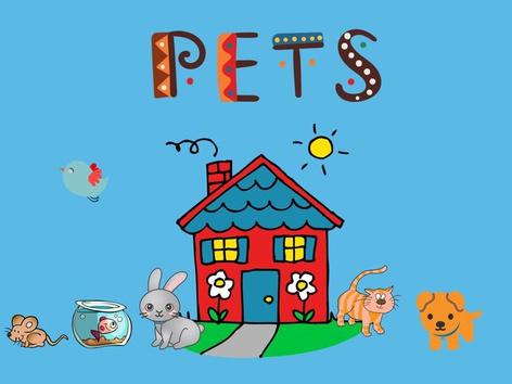 Pets by Thais Baumgartner