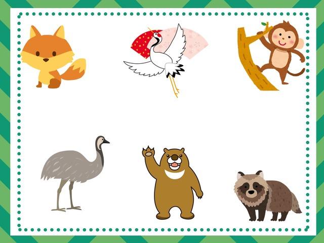 Year 2 Animals Quiz by Katie English