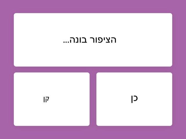משחק 38 by שני כהן
