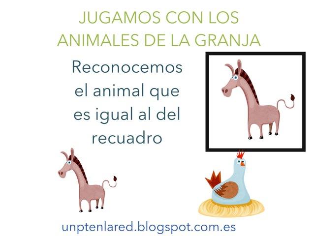 Reconocer Animales Iguales by Jose Sanchez Ureña