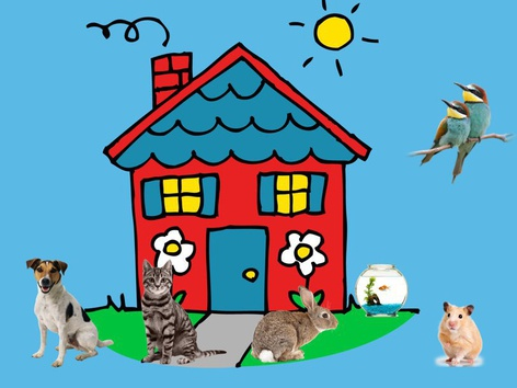 Pet Game by Ligia Pedriali de Mello