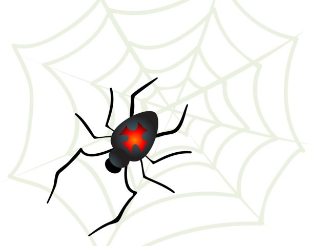 Spider Puzzle by Shawna Paitz