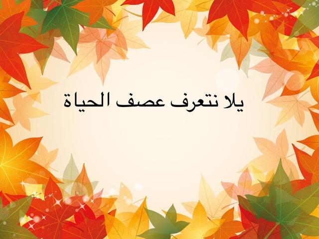 صف الحياة-اسراء صرصور by Sara sartorial