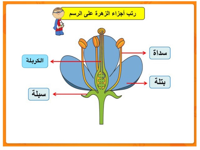 الأزهار by بنفنف نببته