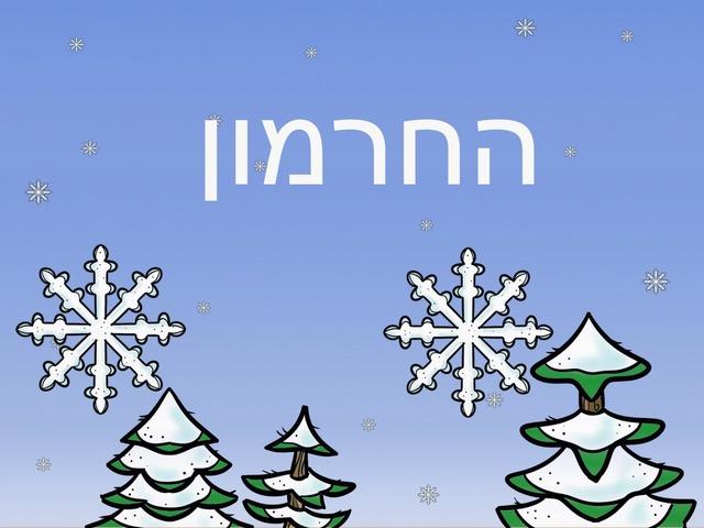 החרמון by מיתל ירושלים