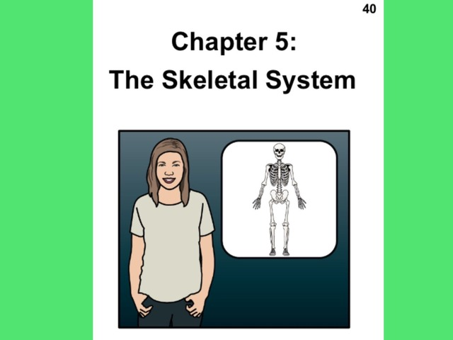 January Unique Unit Chapter 5: The Skeletal System  by Tanya Folmsbee