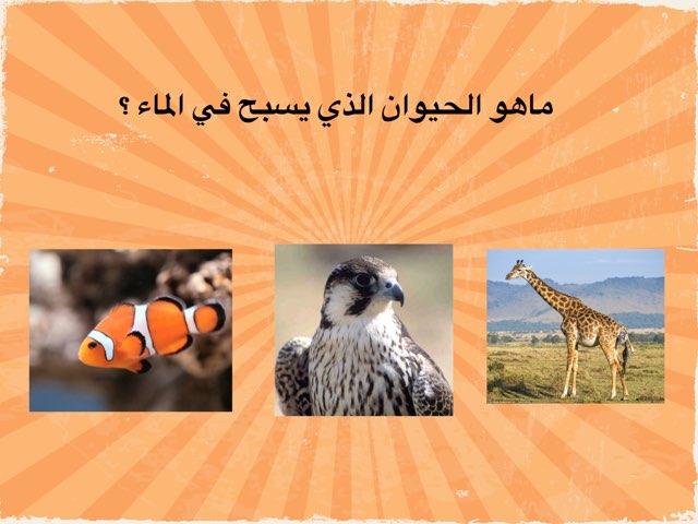 حركة الحيوانات  by hanan alhashemi