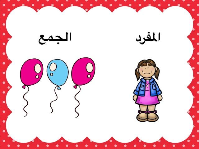 المفرد والجمع by Fatma Alotaibi