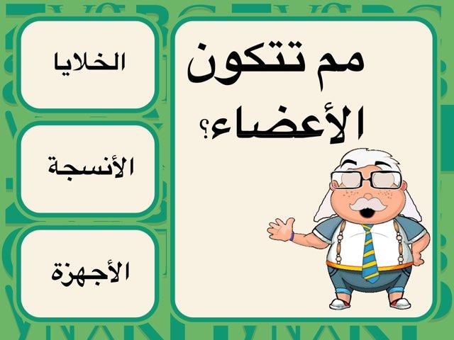 اجزاء جسم الانسان by Kawthar Alsarraf