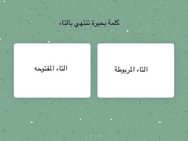 كلمة بحيره by mohamed Swaed