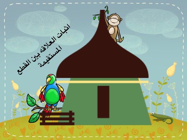 جمع القطع المستقيمه by Alyaa Salman