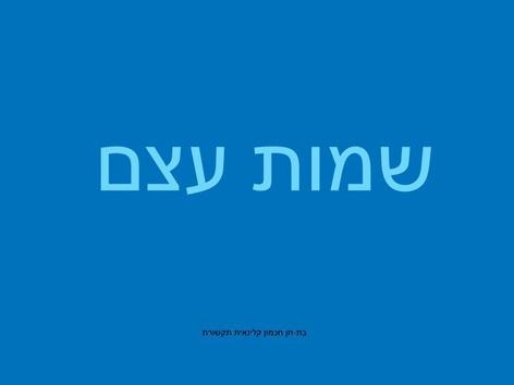 שמות עצם by Avi חכמון