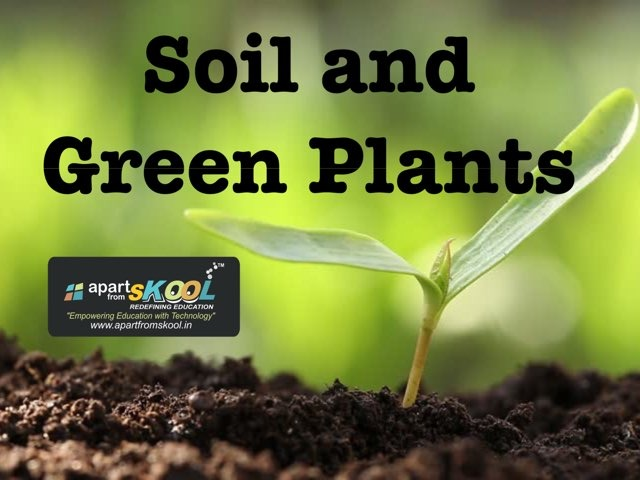 Soil And Green Plants by TinyTap creator