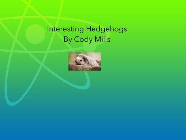 Cody by Hulstrom 1st Grade