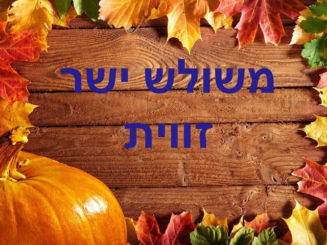 משפט פיתגורס אפרת ליאני ומיטל אופק אביבה שמיר by אפרת חביב