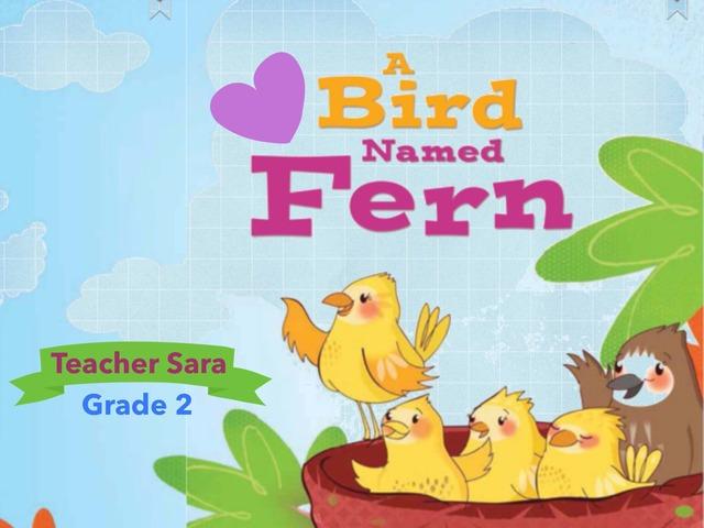 A Bird Named Fern by Sara Alzahrani