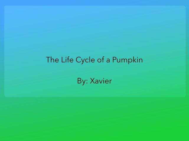 Xavier Pumpkin by Diana Coyne